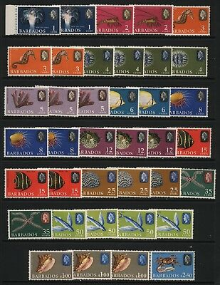 Barbados 1960's Collection 38 QEII Sea Life Stamps MM + UM