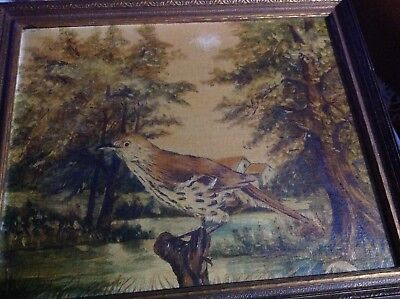 Rare Old Early 20th C. Art Painting Original Oil on Canvas Bird Perch Tree Stump