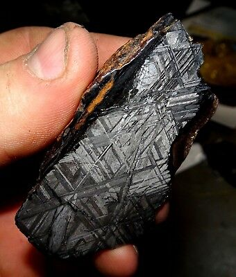 Amazing 156 Gm. Muonionalusta Etched Meteorite End Cut