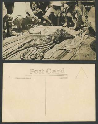 Singapore Old Real Photo Postcard DEER from STOMACH of a Big Python SNAKE Malaya