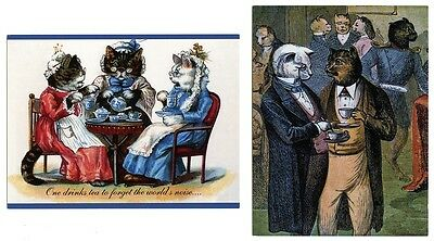 4 modern cat postcards cats dressed cats have tea & cake