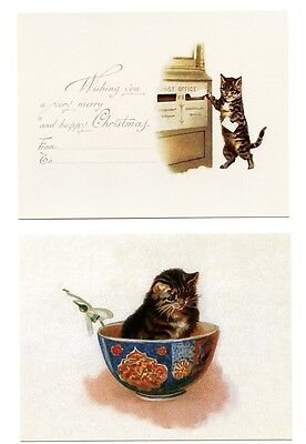 4 modern cat postcards Maguire cats umbrella letter powderpuff bowl