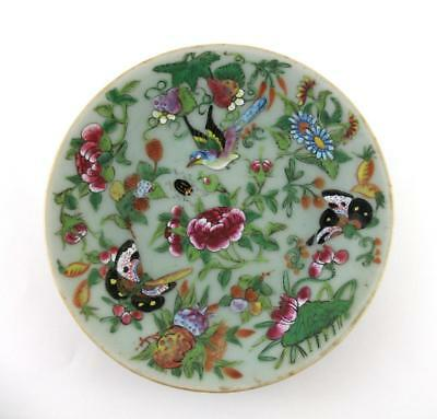 """19th Century Antique Chinese Enamelled Famille Rose Celadon Plate 7.5"""" Tongzhi"""