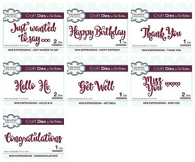 Creative Expressions - Sue Wilson Mini Expressions Dies - Sentiments - SALE