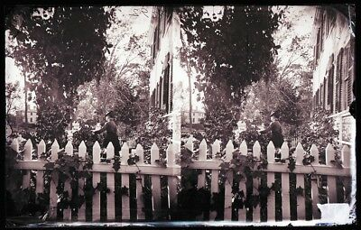 Antique Glass Negative, Fc Philpot, Limerick Me, Woman In Garden,  Stereoview