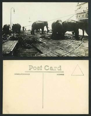 ELEPHANTS working on SHIP BOAT Malaya Singapore Old Real Photo Postcard Elephant