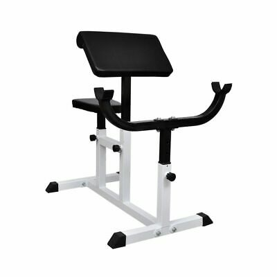New Preacher Curl Weight Bench Fitness Gym Home Strength Training Press Exercise