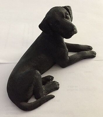 Life like Black Labrador Sculpture Figurine CASTAGNA Made in Italy laying pose