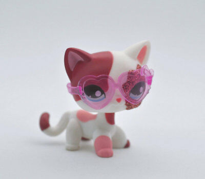 Pet Short Hair Cat + Glasses Child Girl Boy Figure Littlest Toy Loose LPS807