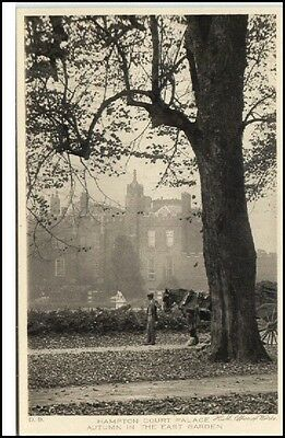 HAMPTON COURT PALACE ~1910/20 Park Baum Parc Tree AK