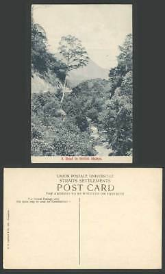 Singapore Old Postcard A Road in British Malaya Straits Settlements River Scene
