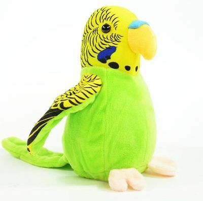 Labertier Sprechender Laber Wellensittich Vogel budgie bird nach plappert Neu