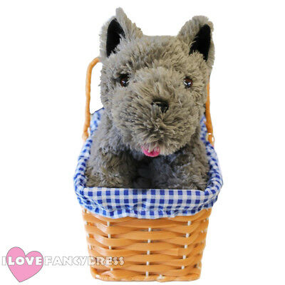Dorothy Toto Gingham Plastic Blue Basket And Dog Fancy Dress Prop Accessory