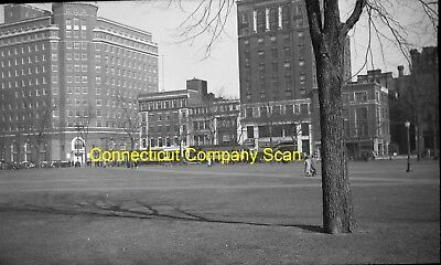 Connecticut Company Original B&w Trolley Negative Of Cars In New Haven, Conn
