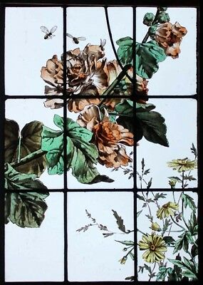 Beautiful Rare Painted French Hollyhock & Bees Antique Stained Glass Window