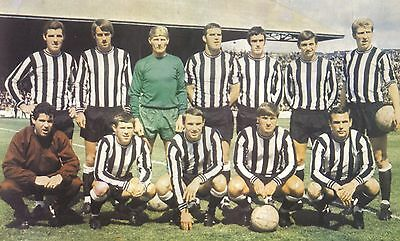Collection Of #85 Newcastle United Football Team Photos