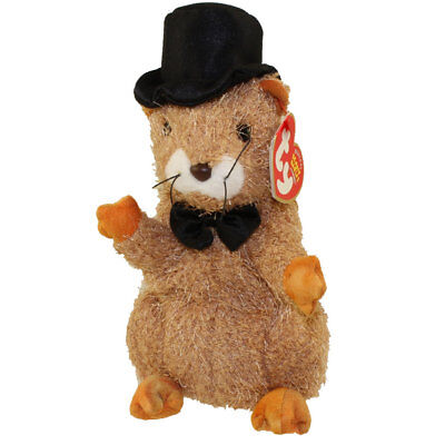 TY Beanie Baby - PUNXSUTAWN-e PHIL 2004 the Groundhog (Internet Excl) (7 inch)