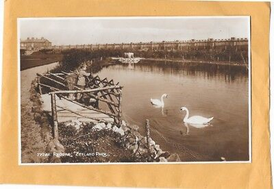 Early Real Photo Postcard Zetland Park Redcar Showing Swans