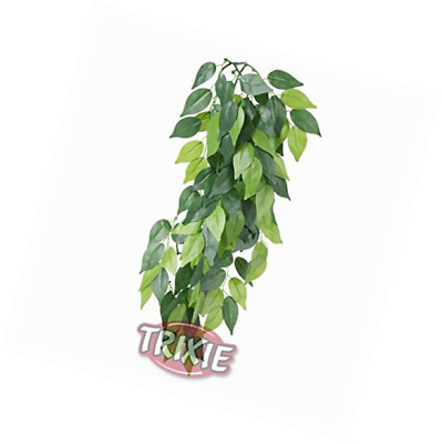 Trixie Silk Hanging Ficus Plant, 50 x 20 cm, Pack of 4