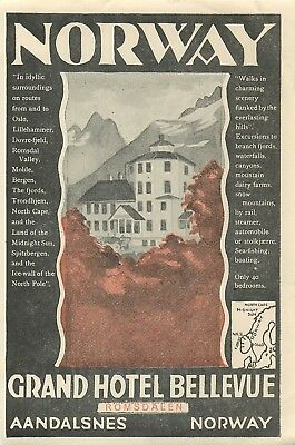 Aandalsnes Romsdalen Norway Grand Hotel Bellevue Great Old Luggage Label
