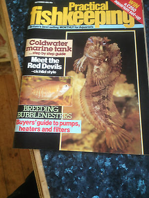 PRACTICAL FISHKEEPING September 1983,Coldwater marine tank step by step