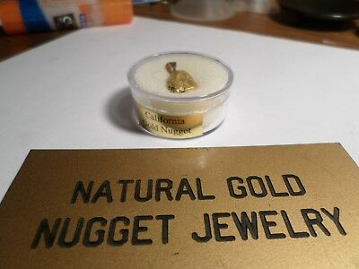 GOLD NUGGET Pendant with a REAL NICE SIZE NUGGET- 4.833 Grams- 14K Gold Bale ?