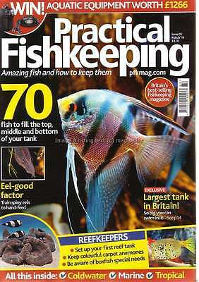 Practical Fishkeeping March 2014 Spiny Eels Equatorial Tetra Reef Tank Set Up