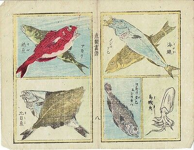 Antique Japanese Woodblock Print. 4 Pictures of Sea Life on Rice Paper (V3749)