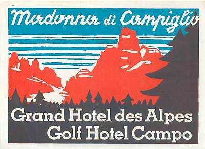 Madonna Di Campiglio Itale Grand Hotel Des Alpes Golf Hotel Campo Luggage Label