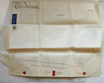 1866 large 3 page vellum indenture Wootton with large plan