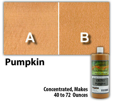 Professional Easy to Apply Water Based Concrete Stain Pumpkin 8oz