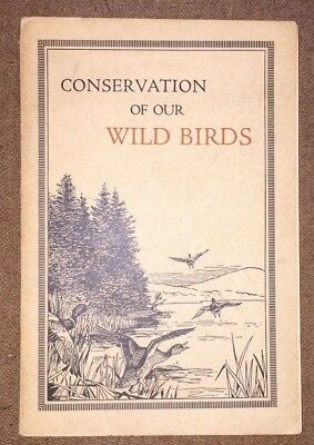 1916 Conservation Wild Birds Massachusetts Fish and Game Scudder Book Rare MA
