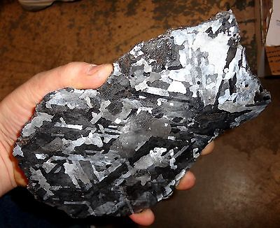 Beautiful Large 815Gm Campo Del Cielo Etched Meteorite Slab!!!