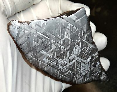 Amazing 885 Gm. Muonionalusta Etched Meteorite End Cut