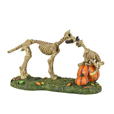 Department 56 Halloween Village Accessory 2018 HAUNTED PETS AT PLAY 6001748
