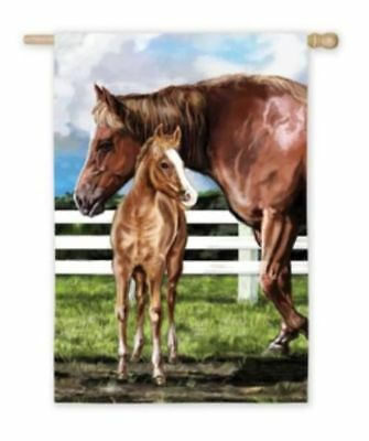 Horse Flag Precious MARE/FOAL HORSE Full-Size Outdoor Flag CLEARANCE