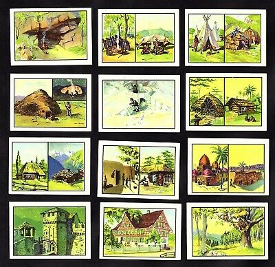 Ancient Unusual Dwellings Nestle 1950 Stamp Card Set Architecture Igloo Cave Man
