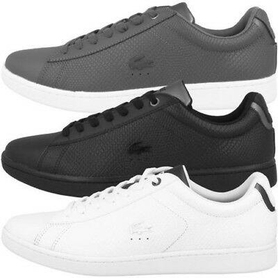 9aa1c5104e Lacoste Carnaby Evo 417 2 Chaussures Baskets en Cuir pour Homme Misano  Protect