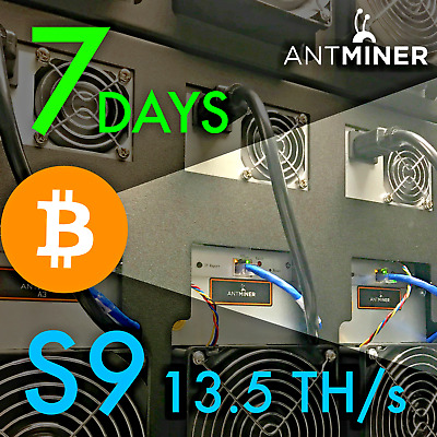 Bitcoin Miner Rental Antminer S9+13.5TH/s 7 Day Contract SHA-256 Service BTC
