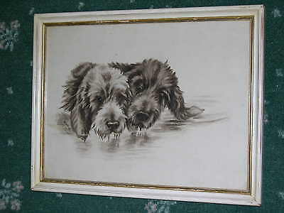 Orig Antique Watercolour Painting Of 2 Otterhounds Otter Hound Signed Dated 1911