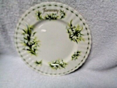 Royal Albert Flower of the Month January Round Plate