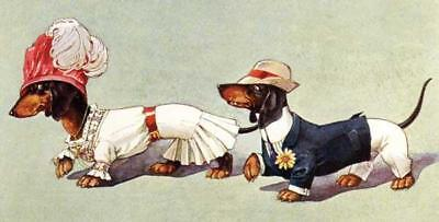 2 Dachsunds,teckels, Dackel, Dogs, Courting, From Postcard, Fridge Magnet