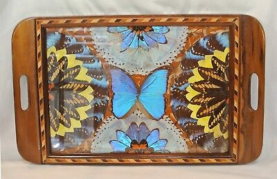 Vintage BUTTERFLY WINGS Inlaid Wood TRAY Made in Brazil 18 3/8 inches