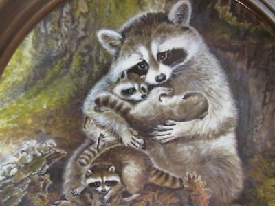"""RACCOON'S COLLECTORS PLATE """" A PROTECTIVE EMBRACE"""" c) 1982 KNOWLES"""" # B3418"""