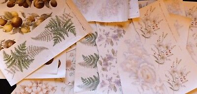 Ceramic Decals 25 Assorted Differant Sizes And Coulers Right Price
