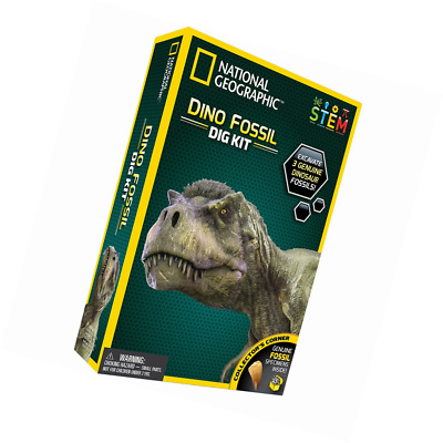 National Geographic Dinosaur Dig Kit Discover with Dr  Cool