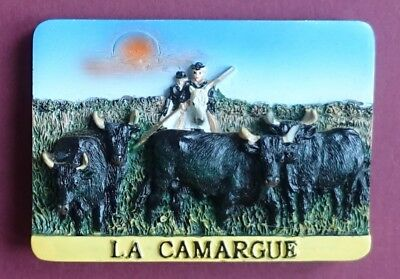 Souvenir Fridge Magnet Camargue Cattle Marshland Southern France
