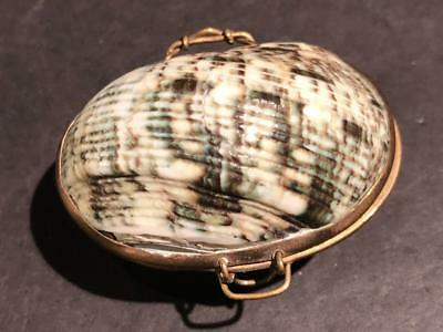 Vintage Shell and Goldtone Metal Coin Purse