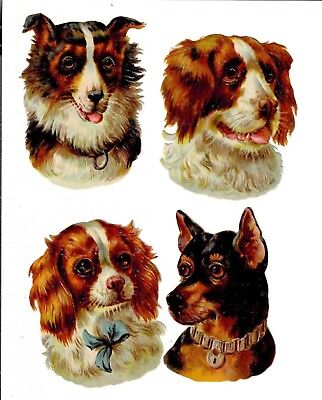 Four late 1880s Dog Head Scraps. Germany. Collie, Spaniel, German Shepherd