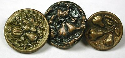 """3 Antique Brass Buttons Various Fig Fruit Images -9/16"""" to 11/16"""""""